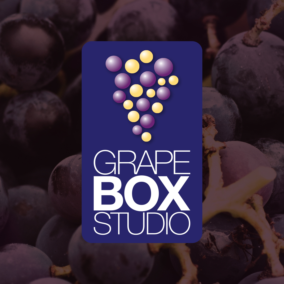 Grape Box Studio Logo